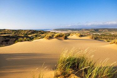 HMS3373736 Portugal, Algarve region, Southwest Alentejano and Costa Vicentina Natural Park, Carrapateira on the Rota Vicentina hiking trail, dunes area (Medo das Angras)