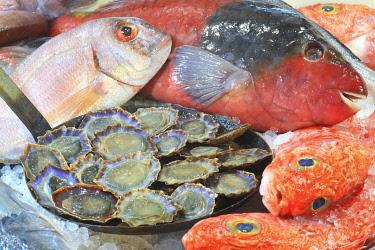 HMS3453400 Portugal, Madeira Island, Camara de Lobos, Vila Do Peixe restaurant, fish of the day and polished with limpets
