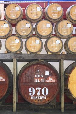 HMS3453475 Portugal, Madeira Island, Machico, Porto da Cruz, rum distillery Engenhos do Norte founded in 1927 and still working with steam engines, barrels of rum