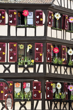 HMS3289248 France, Haut Rhin, Colmar, Rue des Marchands, timbered houses, Easter decorations