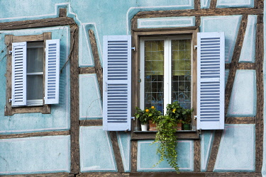 HMS3407603 France, Haut Rhin, Route des Vins d'Alsace, Colmar, facade of a half timbered house in La Petite Venise district