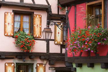 HMS3407694 France, Haut Rhin, Route des Vins d'Alsace, Riquewihr labelled Les Plus Beaux Villages de France (One of the Most Beautiful Villages of France), facade of Kate Wohlfart Feerie de Noel shop and facade...