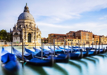 ITA14827 Italy. Veneto. Venice. The Gran Canal with the Santa Maria della Salute Church with gondolas and palaces.
