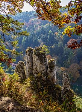 POL2172AW The Glove Rock Formation, elevated view, Pradnik River Valley, Ojcow National Park, Krakow-Czestochowa Upland or Polish Jurassic Highland, Lesser Poland Voivodeship, Poland