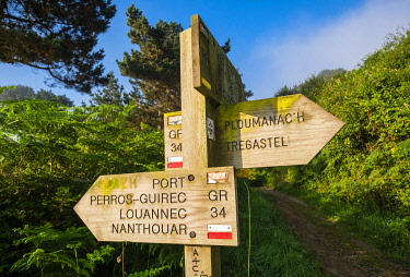 HMS3341964 France, Cotes d'Armor, Perros-Guirec, hike on the Customs footpath or GR 34 hiking trail