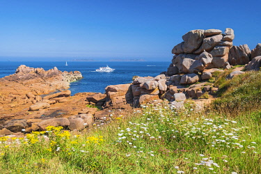 HMS3342147 France, Cotes d'Armor, Pink Granite Coast, Perros-Guirec, Ploumanac'h, on the Customs footpath or GR 34 hiking trail