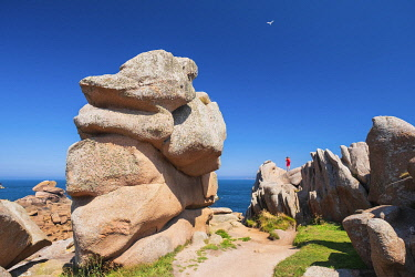 HMS3342152 France, Cotes d'Armor, Pink Granite Coast, Perros-Guirec, Ploumanac'h, on the Customs footpath or GR 34 hiking trail