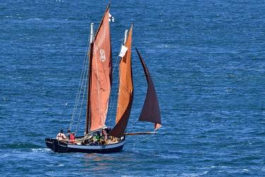 HMS3433890 France, Cotes d'Armor, old rigging sailing along the pink granite coast