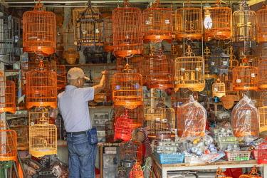 CH12087AW Bird Market, Mong Kok, Kowloon, Hong Kong