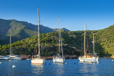 HMS3410548 France, Corse du Sud, Porto, Gulf of Porto listed as World Heritage by UNESCO, sailboats in the port of Girolata, village accessible by boat or foot