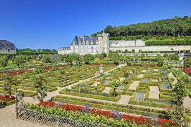 HMS3339181 France, Indre et Loire, Loire valley listed as World Heritage by UNESCO, the castle and the gardens of Villandry property of Angélique and Henri Carvallo