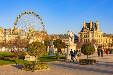 HMS3419914 France, Paris, Tuileries garden in Winter and the Christmas Grand Wheel