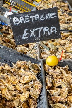 HMS3340441 France, Loire Atlantique, Nantes, Talensac market, oysters