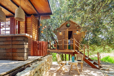 HMS3297538 France, Bouches du Rhone, Cassis, provencal tree house