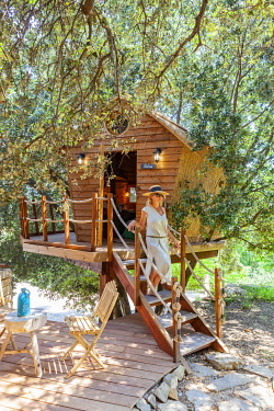 HMS3297545 France, Bouches du Rhone, Cassis, provencal tree house