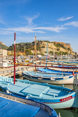HMS3363023 France, Bouches du Rhone, Cassis, the port