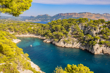 HMS3363127 France, Bouches du Rhone, Cassis, the cove of Port Pin and Cap Canaille in the background, National Park of Calanques
