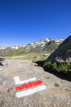 HMS3362552 France, Hautes Alpes, Nevache, La Clarée valley, marking paints on a rock indicating a change of direction on the hiking trail GR57