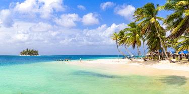 CLKAC116087 Kuanidup, San Blas islands, Comarca Guna Yala, Panama, Central America (MR)