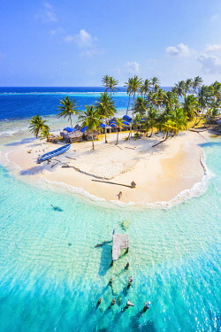 CLKAC116196 Kuanidup island, San Blas islands, Comarca Guna Yala, Panama, Central America  (MR)