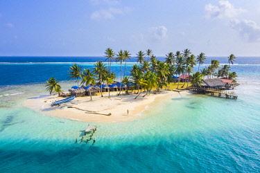CLKAC116197 Kuanidup island, San Blas islands, Comarca Guna Yala, Panama, Central America  (MR)