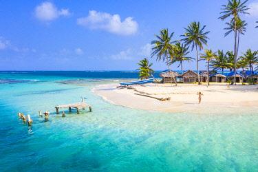 CLKAC116198 Kuanidup island, San Blas islands, Comarca Guna Yala, Panama, Central America (MR)