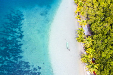 CLKAC116239 Playa Estrella (Starfish beach), Bocas Del Toro, Panama, Central America