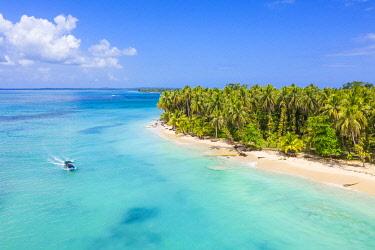 CLKAC116256 Zapatilla island, Bastimentos, Bocas Del Toro, Panama, Central America