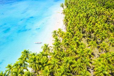 CLKAC116260 Zapatilla island, Bastimentos, Bocas Del Toro, Panama, Central America