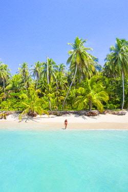 CLKAC116262 Zapatilla island, Bastimentos, Bocas Del Toro, Panama, Central America (MR)