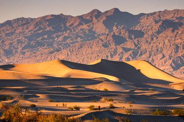 CLKST117377 Mesquite flat sand dunes, Death Valley National Park, California, USA