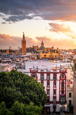 CLKST117197 High view of Seville from Metropol Parasol public walking sculpture. Seville, Andalucia, Spain