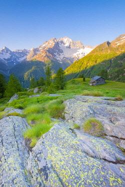 CLKFS114576 Alpe dell Oro, Valmalenco, Valtellina, province of Sondrio, Lombardy, Italian alps, Italy