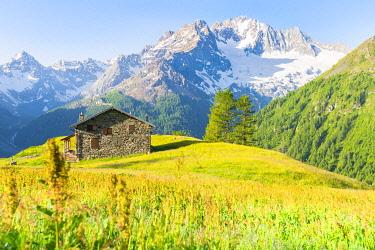 CLKFS114580 Alpe dell Oro and Monte Disgrazia, Valmalenco, Valtellina, province of Sondrio, Lombardy, Italian alps, Italy