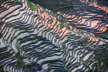 Bada rice terraces in yuanyang rice terraces area, Yunnan, Southern China, China