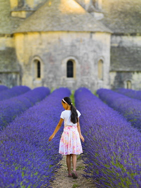 FRA11596AW France, Provence, Vaucluse, Gordes, Senanque abbey; girl walking through lavender (MR)