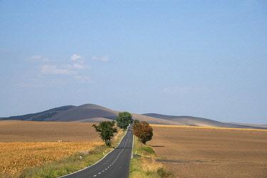ROM1791AWRF Landscape in the Danube Delta close to Tulcea, Dobrudscha, Romania
