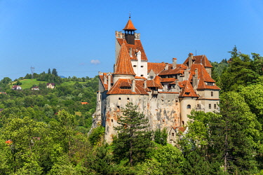 ROM1697AW Castle Bran, Draculas castle, Bran, Transylvania, Romania