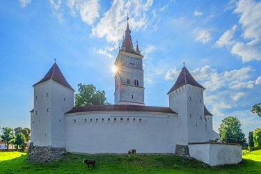 ROM1707AW Fortified church of Harman, Transylvania, Romania