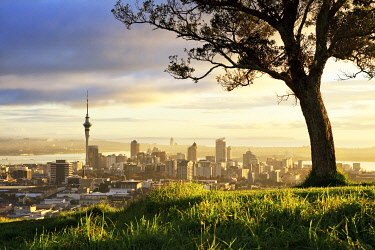 NZ9385AW Sunrise from Mount Eden, Auckland, New Zealand