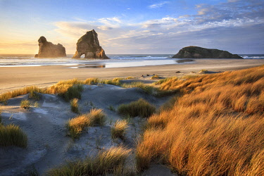 NZ9413AW Sunset at Wharariki beach, Tasman, New Zealand