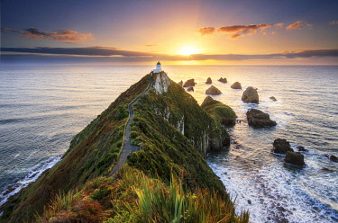 NZ9446AW Sunrise at Nugget Point Lighthouse, New Zealand