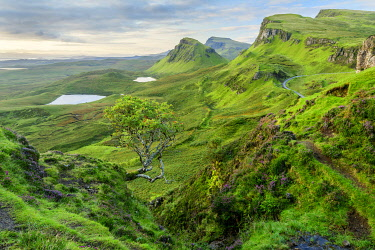 SCO35571AW United Kingdon, Scotland, Isle of Skye, Quiraing escarpment
