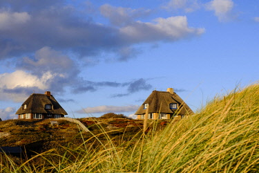 IBXHEB04802133 Typical Frisian houses with thatched roofs in the dunes of Hornum, Sylt, Nordfriesland, Schleswig-Holstein, Germany, Europe