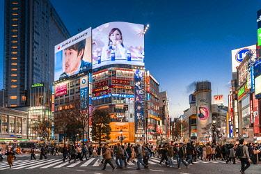 IBXMMW04929956 Shibuya Crossing, crowds at crossroads, colorful signs and illuminated advertising at dusk, railway station Shibuya, Shibuya, Udagawacho, Tokyo, Japan, Asia