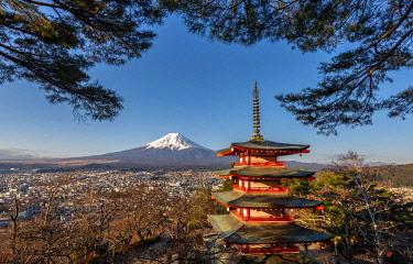 IBXMMW04971189 Five-storey pagoda, Chureito Pagoda, with views over Fujiyoshida City and Mount Fuji volcano at morning sun, Yamanashi Prefecture, Japan, Asia