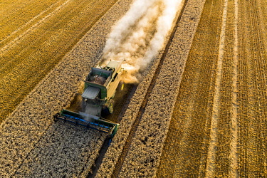 IBXMOX04954933 Aerial view, combine harvester, driving in the evening sun over a dry field with a lot of dust, Wetterau, Hesse, Germany, Europe