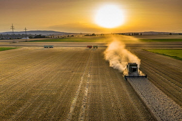 IBXMOX04954947 Aerial view, combine harvester, driving in the evening sun over a dry field with a lot of dust, Wetterau, Hesse, Germany, Europe