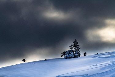 IBXSEI04928459 Two ski tourers climbing in backlight, dark clouds, Balderschwang, Oberallgaeu, Bavaria, Germany, Europe