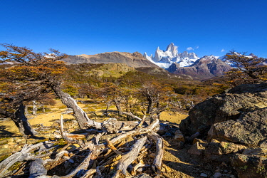 ARG3125AW Fitz Roy mountain against sky viewed from trail in autumn, Los Glaciares National Park, El Chalten, Santa Cruz Province, Argentina